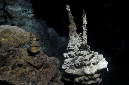 Deep-sea microbes called missing link for complex cellular life