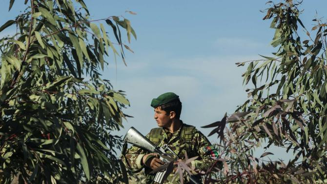 An Afghan National Army soldier stands amongst trees while guarding his post during a mission near forward operating base Gamberi in the Laghman province of Afghanistan