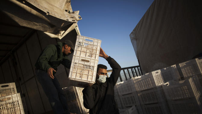 In this Thursday, Oct. 24, 2013, photo, a Syrian refugee carries boxes loaded with bread during the daily distribution at the Zaatari refugee camp near the Syrian border in Jordan. The camp's five bread centers open at daybreak. About 500,000 pitas are handed out daily _ four per person. (AP Photo/Manu Brabo)