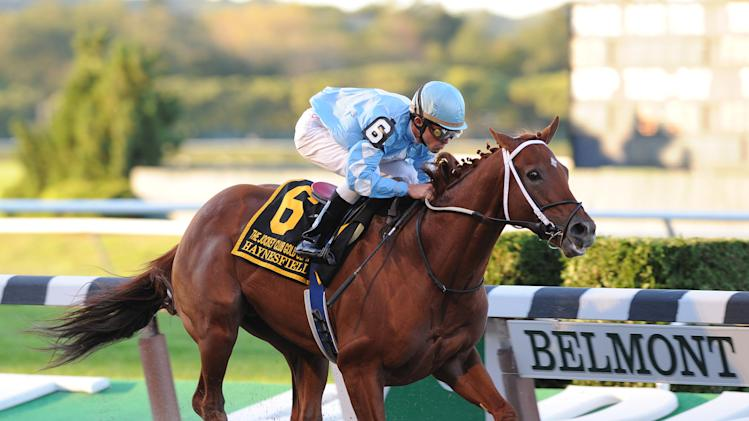 In a photo provided by the New York Racing Association, Haynesfield, ridden by Ramon Dominguez, captures the Jockey Club Gold Cup horse race at Belmont Park on Saturday, Oct. 2, 2010, in New York. (AP Photo/New York Racing Association) ** NO SALES **