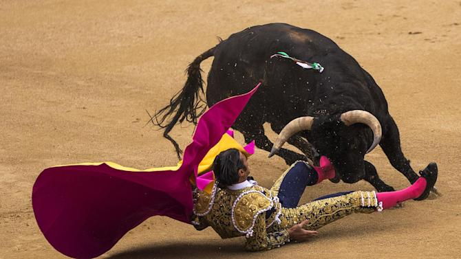 Spanish bullfighter David Mora is tossed by an El Ventorrillo ranch fighting bull during a bullfight at Las Ventas bullring in Madrid, Spain, Tuesday, May 20, 2014. Bullfighting is a tradition in Spain and the season runs from March to October. (AP Photo/Andres Kudacki)