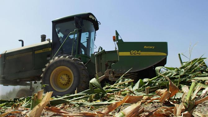 Steve Niedbalski is seen chopping down his drought and heat stricken corn for feed Wednesday, July 11, 2012 in Nashville Ill. Farmers in parts of the Midwest,  are dealing with the worst drought in nearly 25 years.  (AP Photo/Seth Perlman)