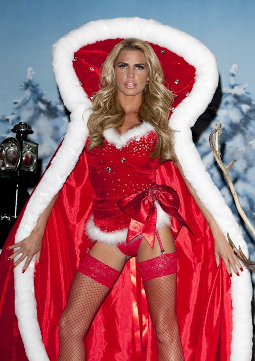 Katie Price's most recent venture is a novel entitled 'Santa Baby.' For this launch, she donned some sexy red underwear, an oversized Father Christmas cloak and invited a couple of reindee