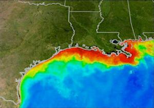 Drought's Positive Effect: Smaller Gulf Dead Zone
