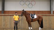 Sad end ... Shane Rose and his horse Taurus have had to pull out of the London Olympics