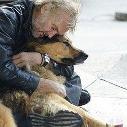 8 Reasons Homeless People 'Deserve' to Have Dogs