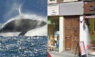 'Whale Skin' Cocktail: London Bar Raided