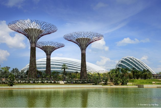 Gardens by the Bay is Singapore's latest big tourist destination. (Photo courtesy of Gardens by the Bay)
