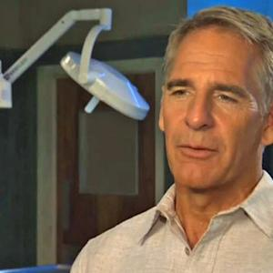 """""""NCIS: New Orleans"""" stars on making Big Easy home"""