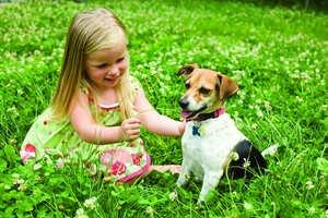 Is Your Pet Ready for Outdoor Weather?