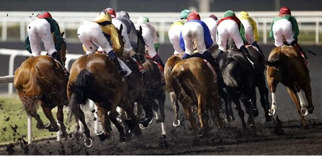 Horses race in the $10 million Dubai World Cup, the world's richest race, at Meydan race track in Dubai on March 30, 2013. The 2011 Kentucky Derby winner (11/2), trained by Australian Graham Motion an