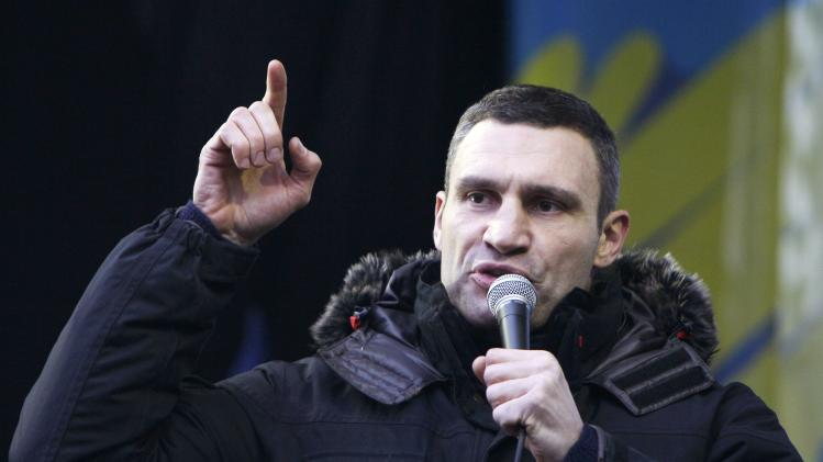 Heavyweight boxing champion and UDAR (Ukrainian Democratic Alliance for Reform) party leader Vitaly Klitschko addresses supporters of EU integration during a rally in central Kiev