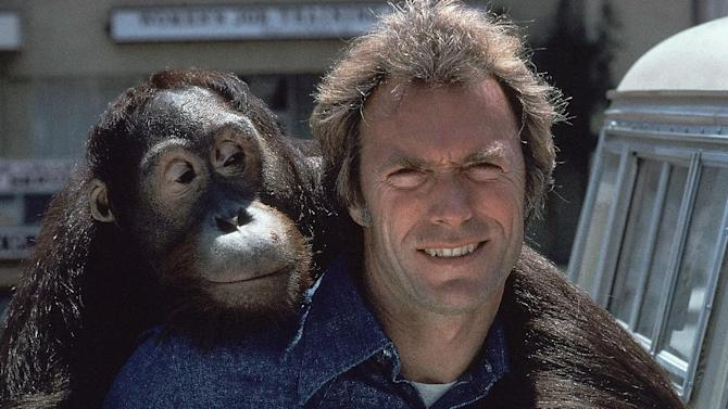 """FILE - In this 1978 file photo, Clint Eastwood and an orangutan named Clyde are shown on the set of the film """"Every Which Way But Loose.""""  (AP Photo/file)"""