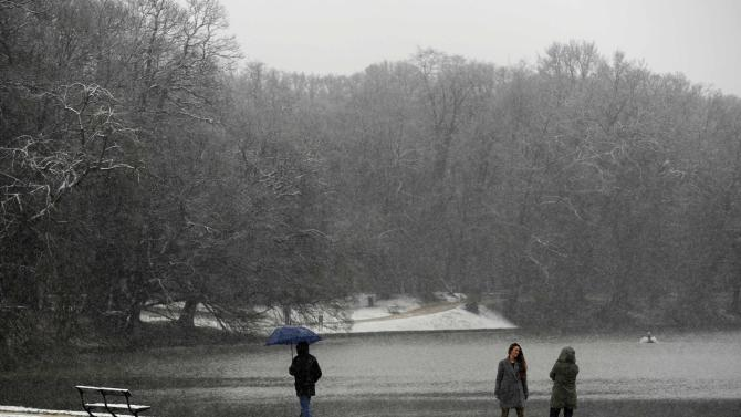 People walk at the Bois de la Cambre during the first snowfall in Brussels