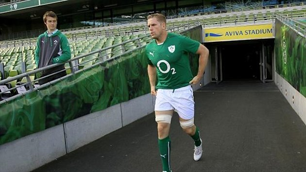 Ireland's Jamie Heaslip, pictured, is the kind of player London Irish would like to attract