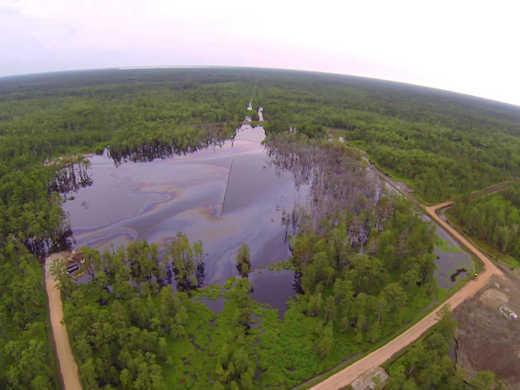 A Sinkhole in the Bayou