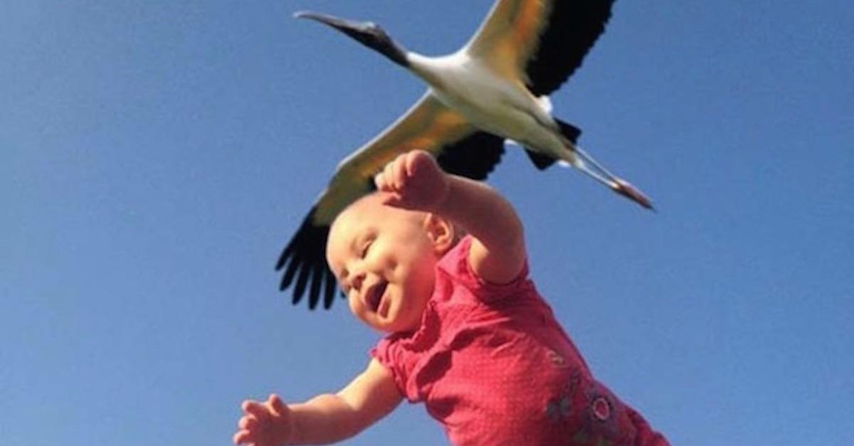35 Perfectly Timed Photos That Aren't Photoshopped