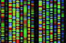 Human gene sequencing gets an official yardstick