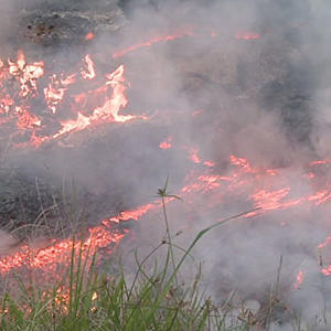 Raw: Hawaii Lava May Force Evacuation