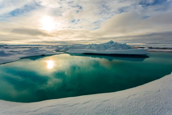 Why Arctic Sea Ice Melts So Quickly