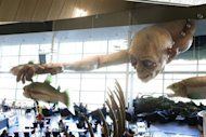 A giant Gollum creature from &quot;The &quot;Hobbit&quot; movie catches a fish on the ceiling of Wellington airport on October 31, 2012. The producers of &quot;The Hobbit&quot; movies have rejected allegations from animal rights group PETA that animals have died during the making of the highly anticipated Tolkien trilogy in New Zealand