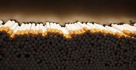 Cigarettes are piled during the manufacturing process in the British American Tobacco Cigarette Factory (BAT) in Bayreuth