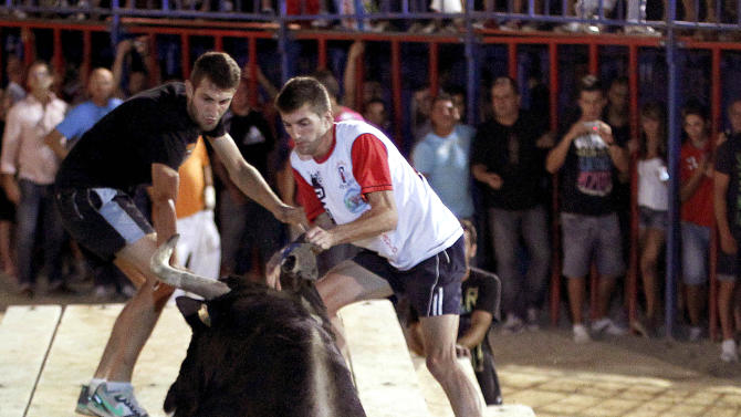 In this Sept. 9, 2011 photo, a reveler runs away from 'Raton' the killer bull in the early hours Sunday, during a festivity in Sueca, near Valencia, Spain, The hulking black and white bull, 'Raton' (Mouse),  a 1,100-pound (500-kilogram) beast has killed two people so far this year at pueblo parties where he's released in a ring and amateur daredevils provoke him so he'll chase them around to the cheers of thousands. Nobody got killed this time. (AP Photo/Alberto Saiz)