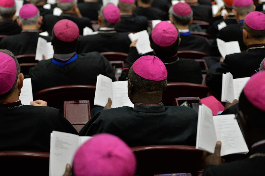 Africa bishops feel left out of Church synod: archbishop