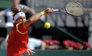 Despite absent Rafael Nadal, the US still have to defeat two of the finest claycourters in world tennis in the shape of world No.5 David Ferrer (pictured) and No.12 Nicolas Almagro in this weekend's Davis Cup semi-finals, in Gijon
