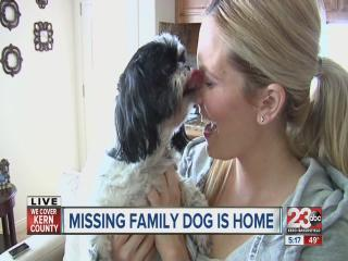 Missing family dog is home