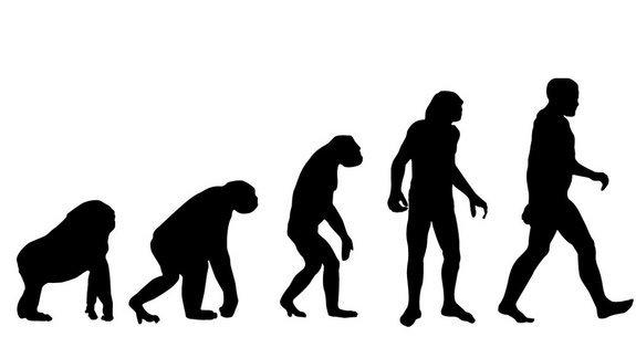More Americans Continue to Accept Creationism Than Evolution