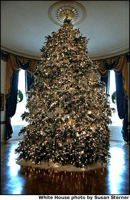 The centerpiece of the Blue Room is the offical 2001 White House Christmas Tree. Grown in central Pennsylvania, the 18-foor Concolor fir was donated by Bowersox family.