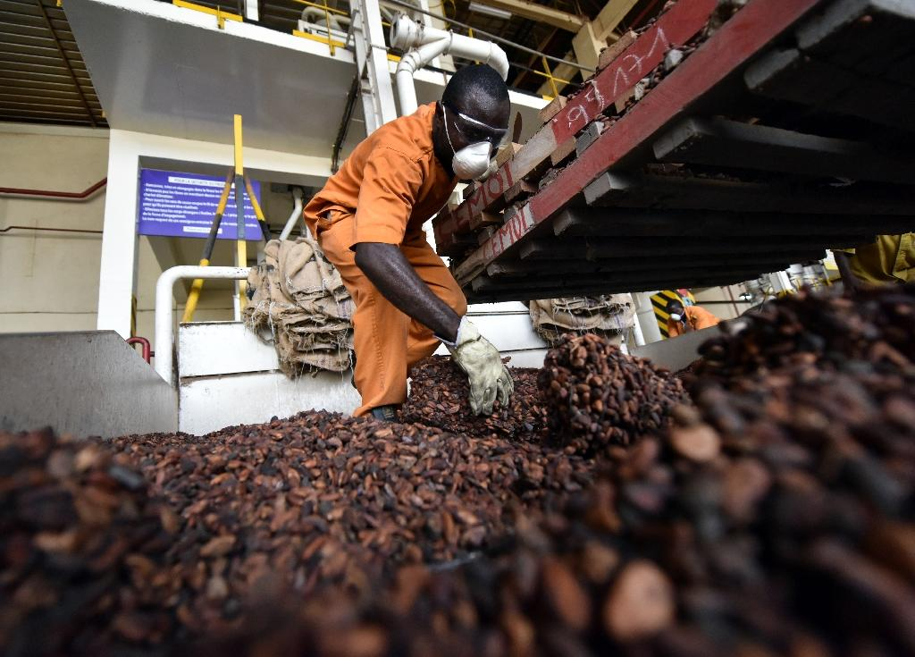 Cocoa king Ivory Coast wants to cash in on chocolate