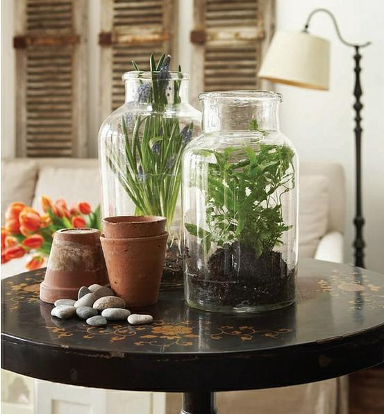 Faux Terrariums