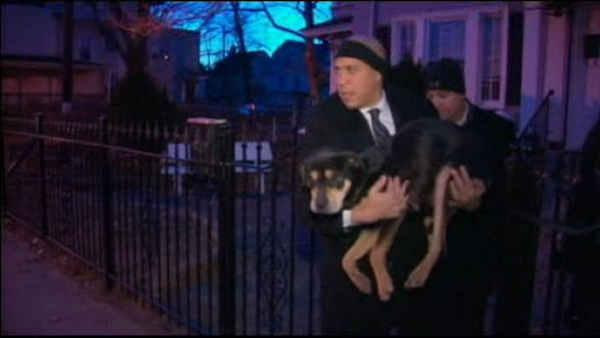 Mayor Cory Booker rescues dog from the cold