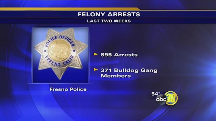 Fresno's Operation Bulldog cracks down on gang members