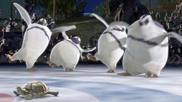 Penguins with a turtle in Walt Disney Pictures' The Wild