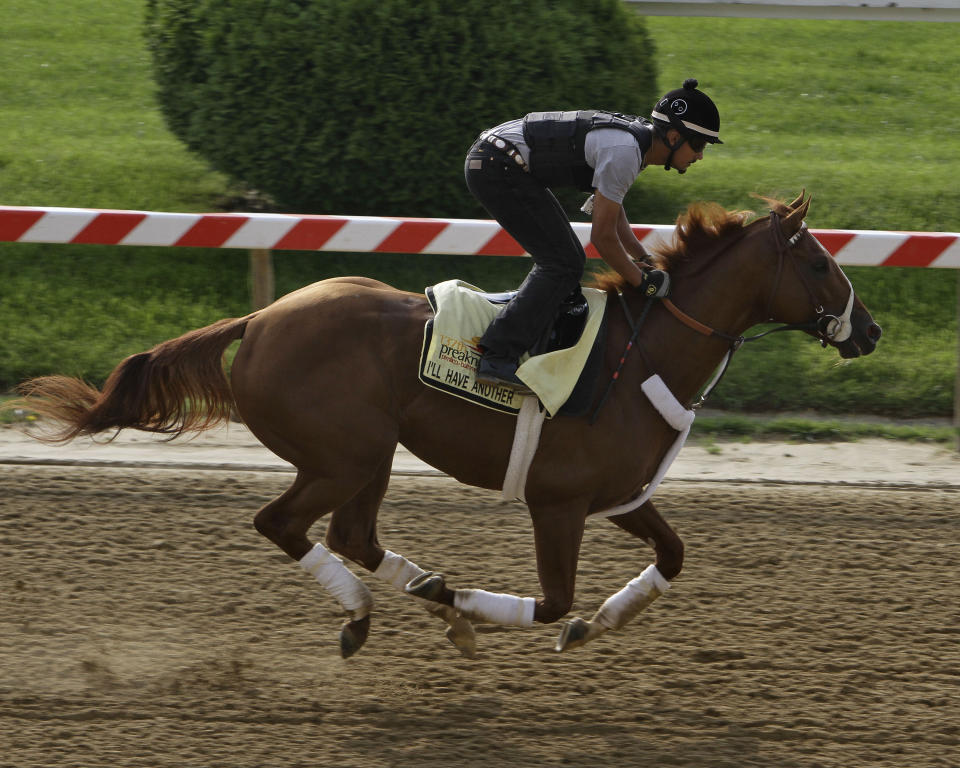 I'll Have Another, winner of the Kentucky Derby, gallops under exercise rider Johnny Garcia at Pimlico Race Course in Baltimore, Md., Wednesday, May 16, 2012. The Preakness horse race will take place Saturday at Pimlico.  (AP Photo/Garry Jones)
