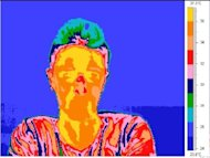 A thermal image (hot areas are red) shows off how lies affect the face (Image: University of Granada)