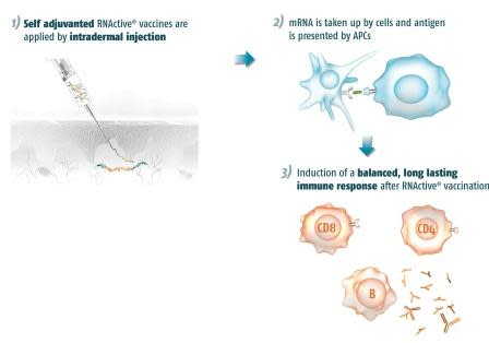 Cancer Immunotherapy Where Are We Going?