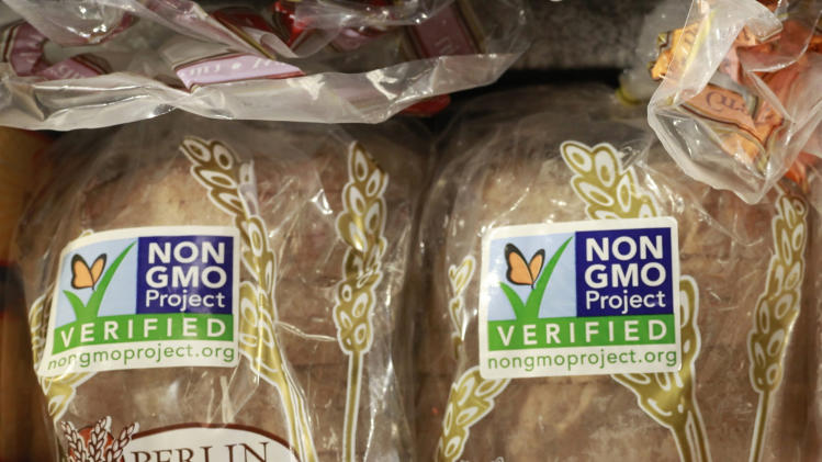 Key points in the genetically modified food debate