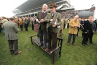 Two racegoers stand on a bench to get a better view of the The JLT Novices' Steeple Chase