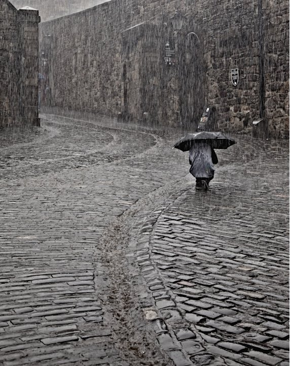 'Light Rain in Edinburgh', Edinburgh, Scotland: Bill Terrance photographed one hardy soul out in a downpour as others hid inside. His picture was the Urban View category runner-up. (Bill Terrance, Lan