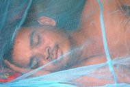 A man is seen sleeping under a mosquito net at a village in Pailin province, some 350km northwest of Phnom Penh. Cambodian villagers armed with a little medical know-how - and their mobile telephones -are the nation&#39;s new foot soldiers in the fight against drug-resistant malaria in remote parts of the impoverished nation, where access to health services can be difficult