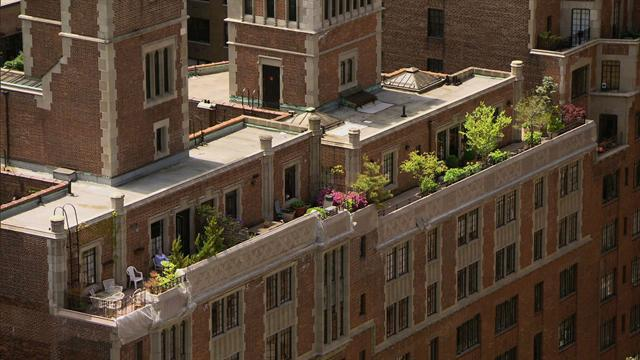 Gardens in the New York sky