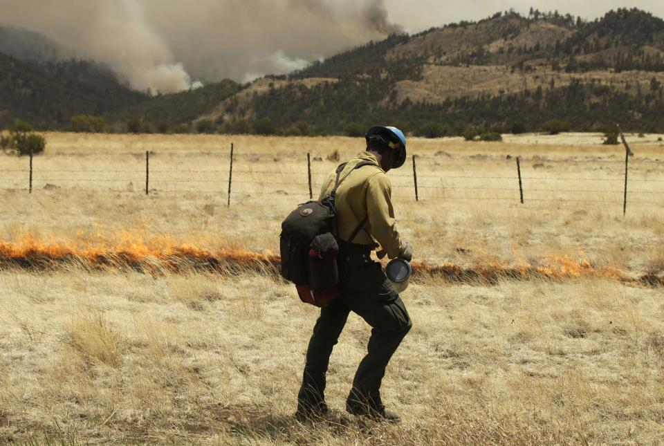 A firefighter sets a backfire to fight the Wallow Fire along highway 260 near Eagar, Ariz., Thursday, June 9, 2011. A spot fire at the edge of the larger blaze prompted the few residents left in Springerville and the neighboring community of Eagar to flee.  (AP Photo/Marcio Jose Sanchez)