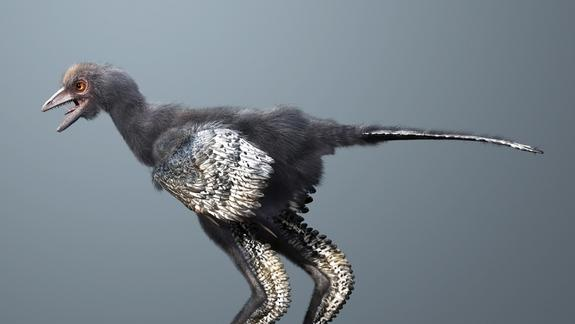 New Feathered Dino May Be World's First Bird