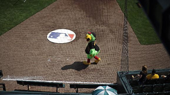 The Pittsburgh Pirates mascot, the Pirate Parrot walks across the field at McKechnie Field before the beginning of the Pittsburgh Pirates' Black and Gold intrasquad spring training baseball game in Bradenton, Fla., Monday, March 2, 2015. Alvarez did not play in the game. (AP Photo/Gene J. Puskar)
