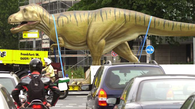 FILE - In this June 15, 2002 file photo, a 14-meter (46-foot) long, 4-meter (13-foot) high life-size model of a Tyrannosaurus rex dinosaur is transported through the streets of Frankfurt to the Senckenberg Museum. When the authors of a study examined depictions of the animal, they found that popular dinosaur books have generally gotten the posture right since 1990. But they also found that an upright posture has remained popular in pop culture items like toys, games, cookie cutters, clothing, comics and movies. (AP Photo/Bernd Kammerer)