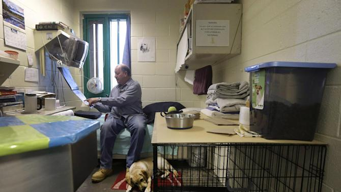 In this Nov. 26, 2012 photo, inmate John Barba looks at a calendar as he sits in his 6-by-9-foot cell that he shares with Dill, a veteran assistance dog in training, at Western Correctional Institution in Cresaptown, Md. Dill is one of three dogs assigned since September to inmates at the maximum-security prison for basic training as service dogs for disabled military veterans. The inmates, who are also veterans, are among the state's first prisoners to join a national trend of training service dogs in correctional institutions. Professional trainers say prison-raised dogs tend to graduate sooner and at higher rates than those raised traditionally in foster homes because puppies respond well to the consistency and rigid schedules of prison life. (AP Photo/Patrick Semansky)